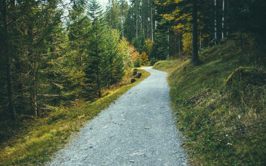 Schatzsuche in der Biographie — Sichtweisen und Kommunikation